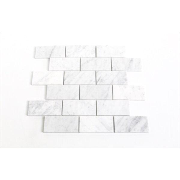 Bianco Carrara Polished 2 x 4 Marble Mosaic Tile