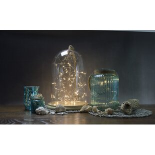 Price Check Allure 15-Light 5 ft. Fairy String Lights By Boston Warehouse Trading Corp