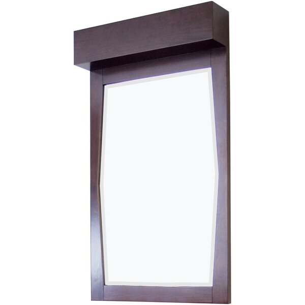 Transitional Wall Mirror by American Imaginations
