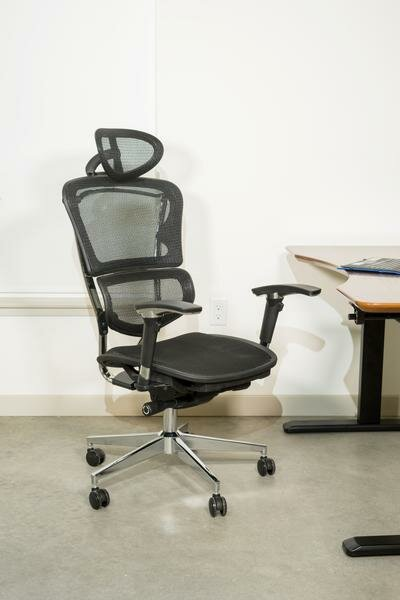 Janessa Ergonomic Mesh Office Chair by Symple Stuff