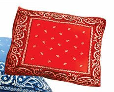 Rectangle Bandana Dog Pillow by Dogzzzz