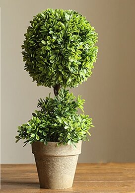 Rustic Artificial Desktop Boxwood Topiary in Various Designs by Charlton Home