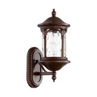 Witte 1-Light Outdoor Sconce By Fleur De Lis Living Outdoor Lighting