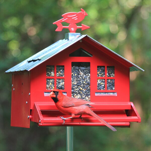 Squirrel-Be-Gone Country Style Hopper Bird Feeder by Perky Pet