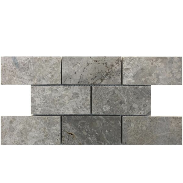 2 x 4 Natural Stone Mosaic Tile in Marine Fantasy by QDI Surfaces
