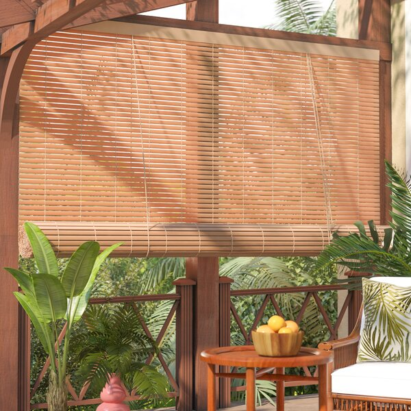 Outdoor Roller Shade by Beachcrest Home