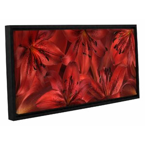 'Lily Landscape' by Cora Niele Framed Photographic Print on Wrapped Canvas by ArtWall