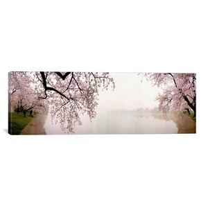 'Cherry Blossoms at the Lakeside, Washington, D.C' Photographic Print on Canvas by East Urban Home