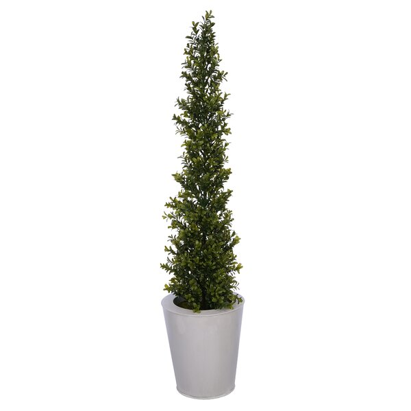 Artificial Desktop Boxwood Topiary by Wrought Studio