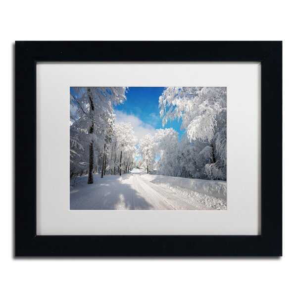Going Nowhere by Philippe Sainte-Laudy Framed Photographic Print by Trademark Fine Art