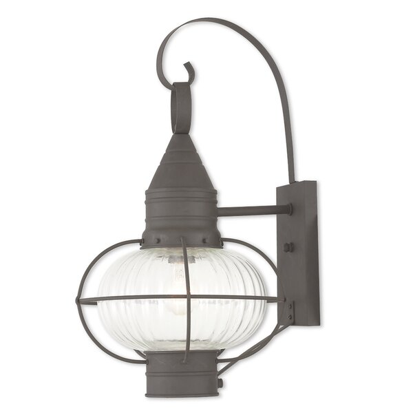 Elmhurst 1-Light Outdoor Wall Lantern by Breakwater Bay