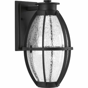 Where buy  Janay Modern 1-Light Outdoor Wall Lantern By Longshore Tides