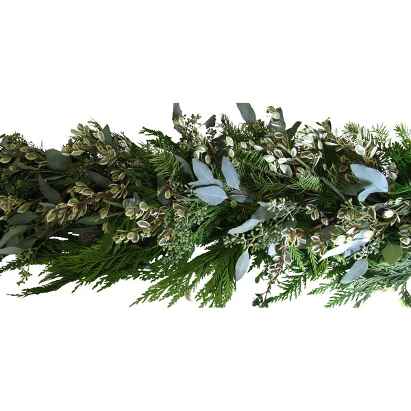 Holiday Garland with Rhamnus by From the Garden