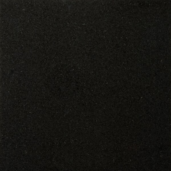 Granite 12 x 12 Field Tile in Absolute Black by Emser Tile