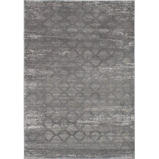 Finian Gray Area Rug