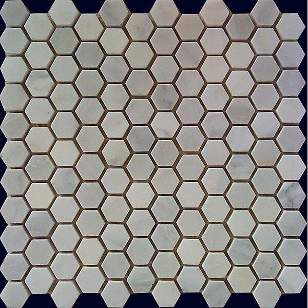 Hexagon 1 x 1 Natural Stone Mosaic Tile in White Statuary