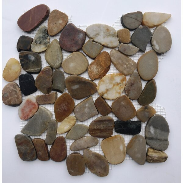 River Rock Random Sized Natural Stone Mosaic Tile in Beige/Brown by FuStone