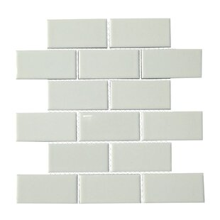 2x6 Subway Tile Wayfair