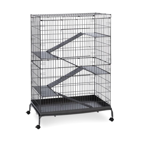 Jumbo Small Animal Cage by Prevue Hendryx
