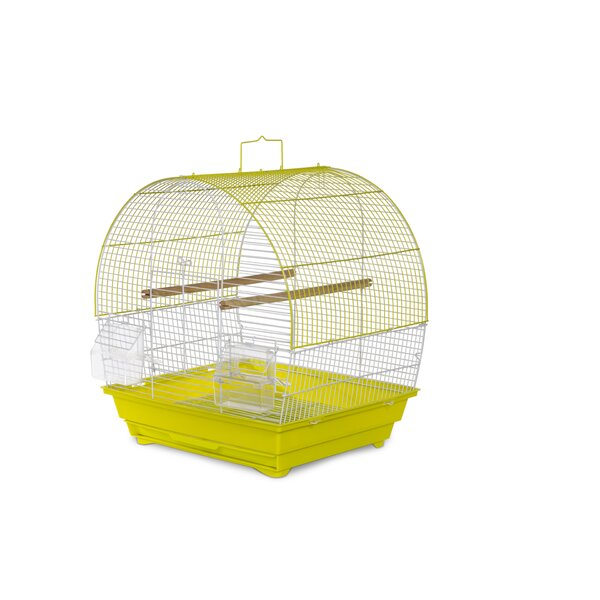 Tanya Pet Dome Top Cockatiel Bird Cage with Removable Tray by Tucker Murphy Pet