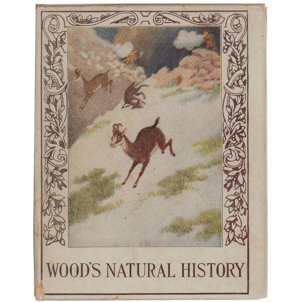 Authentic Decorative Books - Collectible 1897