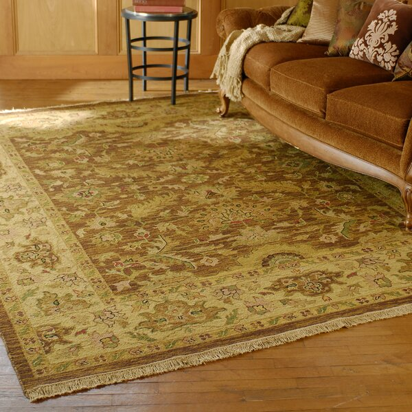 Baxter Brown/Olive Area Rug by Darby Home Co
