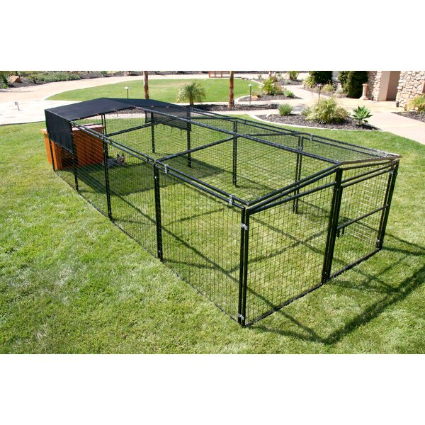 Laplant Welded Wire Chicken Run Extension by Tucker Murphy Pet