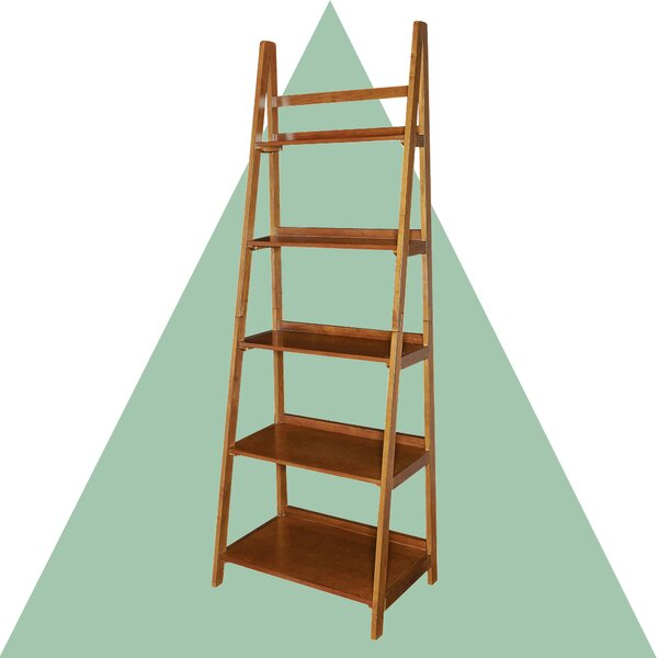 Brock Ladder Bookcase By Hashtag Home