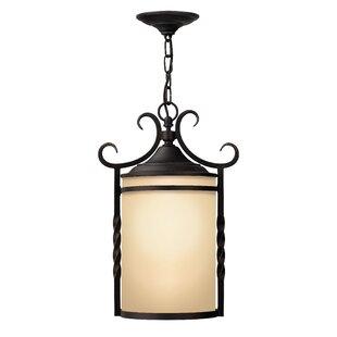 Great Price Carlyle 1-Light Outdoor Pendant By Fleur De Lis Living