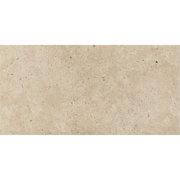 Everstone 12 x 24 Porcelain Field Tile in Ever-Claire by Travis Tile Sales