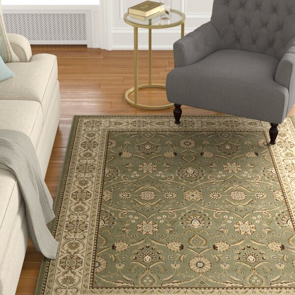 Mailus Green/Brown Area Rug by Alcott Hill