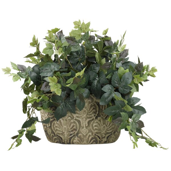 Maple Ceramic Floor Ivy Plant in Planter by Bloomsbury Market