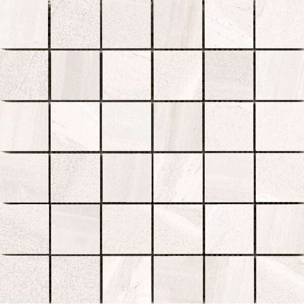 Access 2 x 2 Porcelain Mosaic Tile in Path by Emser Tile