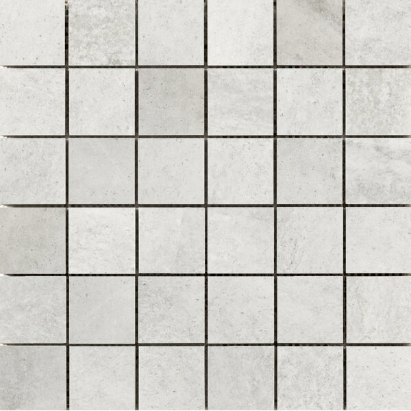 Trovata 2 x 2 Porcelain Mosaic Tile in Diary by Emser Tile