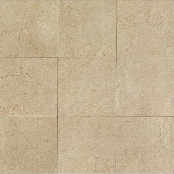 El Dorado 12 x 12 Porcelain Field Tile in Sand by Grayson Martin