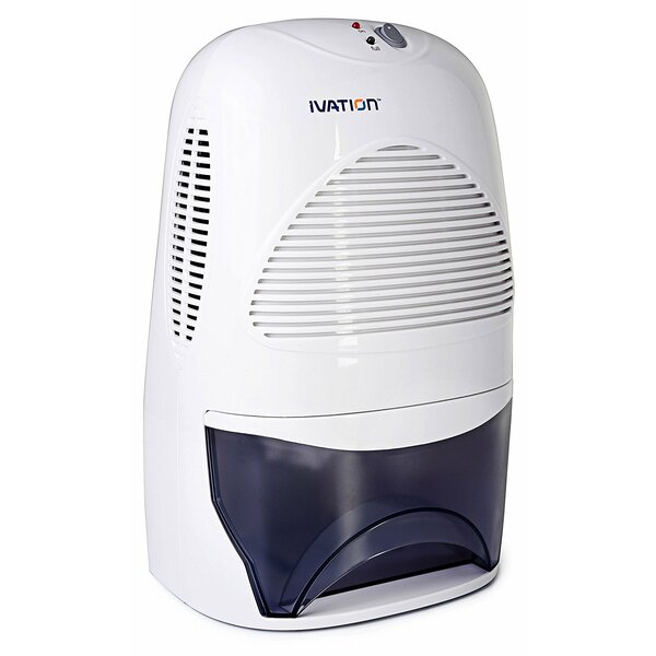 Ivation 1 25 Pint Dehumidifier By Ivation.