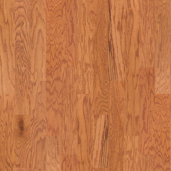 Oak Grove 5 Engineered Red Oak Hardwood Flooring in Gainesville by Shaw Floors