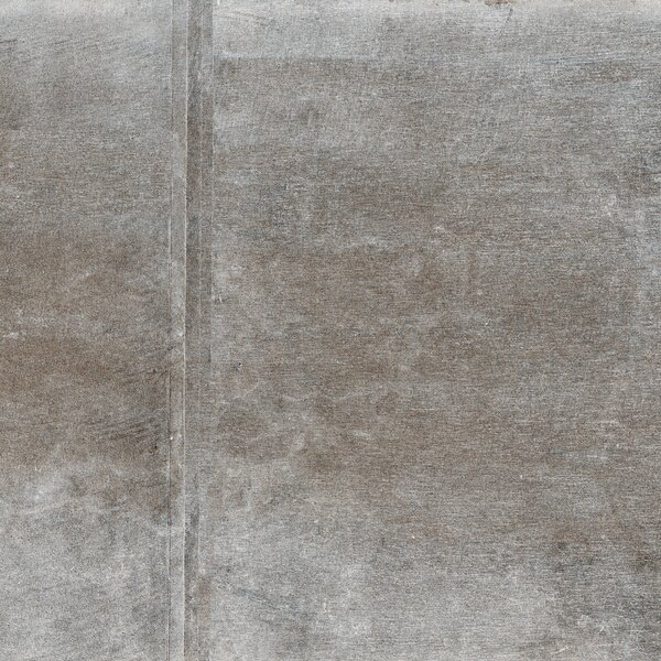Absolute 12 x 12 Porcelain Field Tile in Pebble by Parvatile