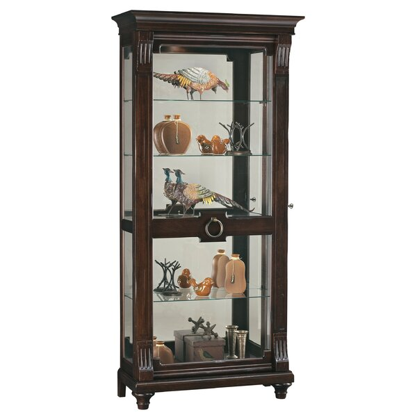 Brinkman Curio Cabinet by Darby Home Co