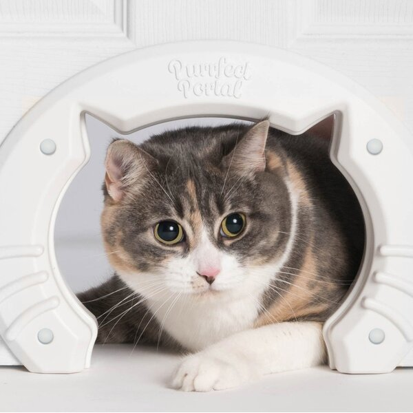 Built-in Pet Door by Purrfect Portal