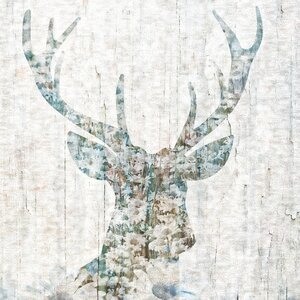 'Woodland Deer I' Graphic Art Print on Wrapped Canvas by Wrought Studio