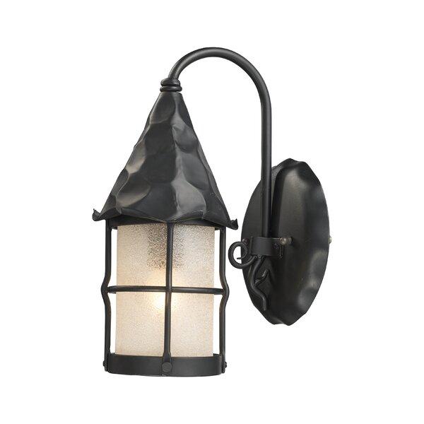 Busch 1-Light Outdoor Wall Lantern by Millwood Pines