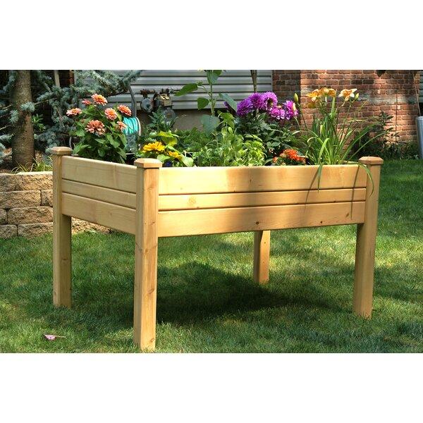 Konkol 4 ft x 3 ft Cedar Raised Garden by August Grove