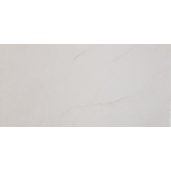 Aria 12 x 24 Porcelain Field Tile in Ice by MSI
