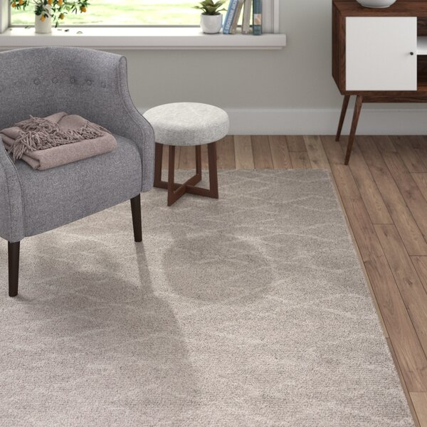Aylin Light Gray Area Rug by Langley Street
