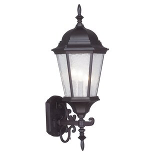 Busse  3-Light Outdoor Sconce By Darby Home Co Outdoor Lighting