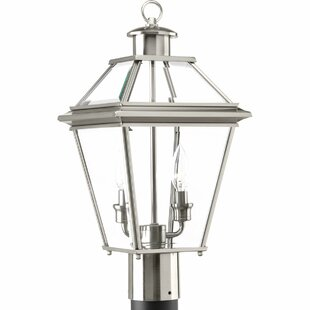 Guide to buy Gunnora 2-Light Lantern Head By Darby Home Co