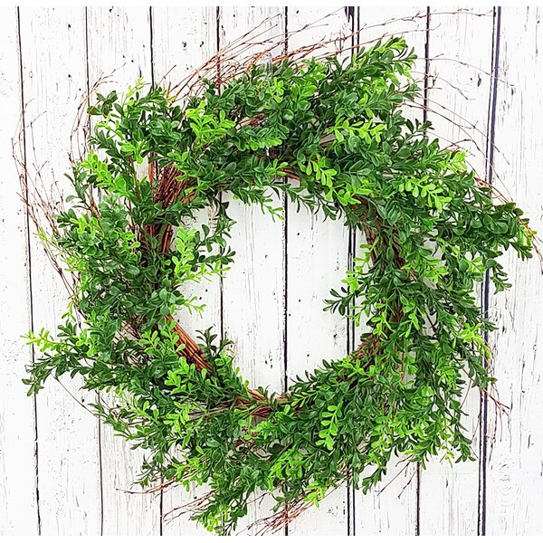 24 Boxwood Wreath by Gracie Oaks