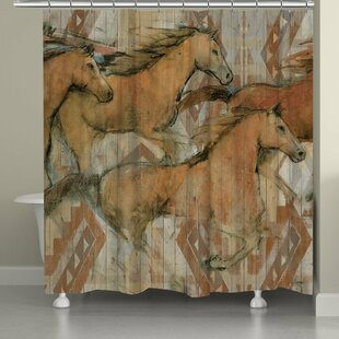 Reviews Southwestern Horses Shower Curtain By Laural Home