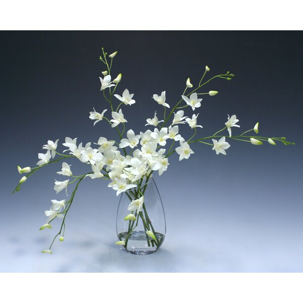 Orchid Floral Arrangement in Glass Vase by Darby Home Co